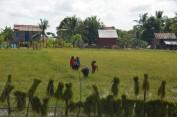 161121-kampongthom-cambodge-12-copier
