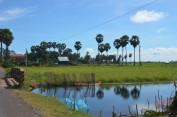 161121-kampongthom-cambodge-40-copier
