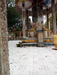 161122-kompongthom-cambodge-113-copier