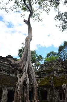 161126-angkor-cambodge-157-copier