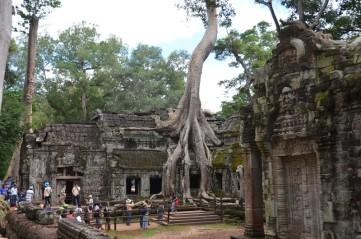 161126-angkor-cambodge-161-copier