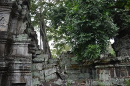 161126-angkor-cambodge-170-copier