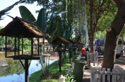 161127-angkor-cambodge-3-copier