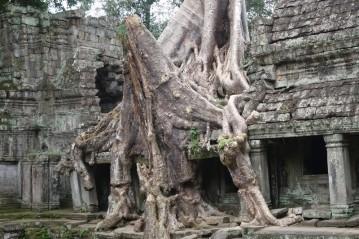 161128-angkor-cambodge-138-copier