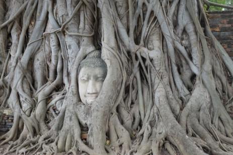 161206-ayutthaya-thailande-51-copier