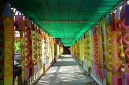 161212-chiangmai-thailande-15-copier