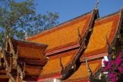 161214-chiangmai-thailande-101-copier