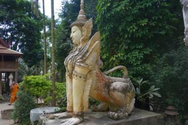 161214-chiangmai-thailande-39-copier