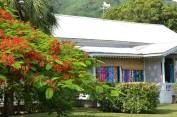 170204-Moreea-Polynesie francaise (20) (Copier)