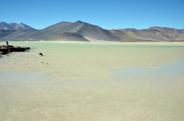 170507-SanPedroDeAtacama-Chili (43) (Copier)