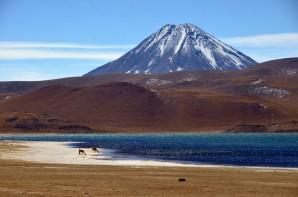 170507-SanPedroDeAtacama-Chili (92) (Copier)