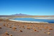 170508-SanPedroDeAtacama-Chili (57) (Copier)