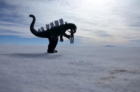 170512-Uyuni-Bolivie (109) (Copier)