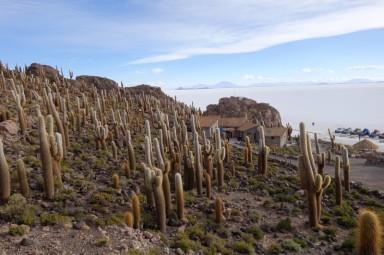 170512-Uyuni-Bolivie (143) (Copier)