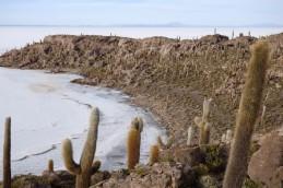170512-Uyuni-Bolivie (153) (Copier)