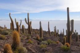 170512-Uyuni-Bolivie (173) (Copier)