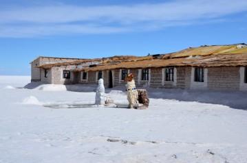170512-Uyuni-Bolivie (82) (Copier)