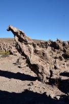 170513-Uyuni-Bolivie (38) (Copier)