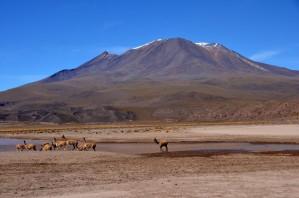 170513-Uyuni-Bolivie (83) (Copier)