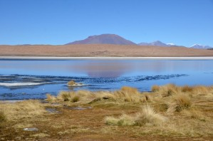 170513-Uyuni-Bolivie (92) (Copier)