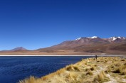 170513-Uyuni-Bolivie (93) (Copier)