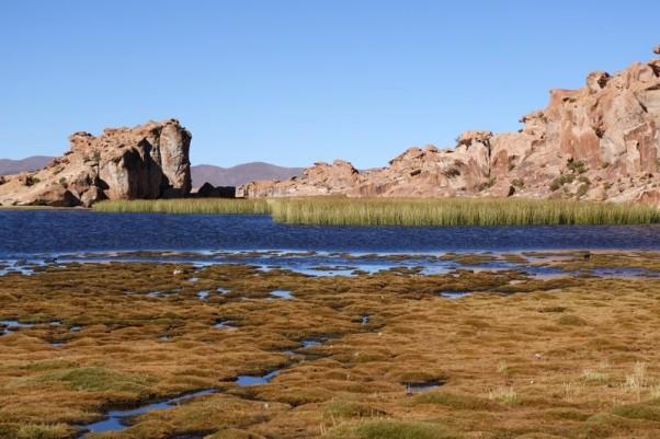 170514-Uyuni-Bolivie (100) (Copier)