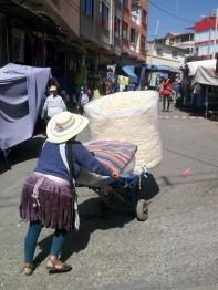 170520-Cochabamba-Bolivie (15) (Copier)