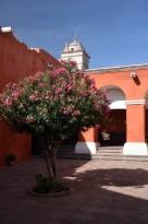 170609-Arequipa-Perou (17) (Copier)