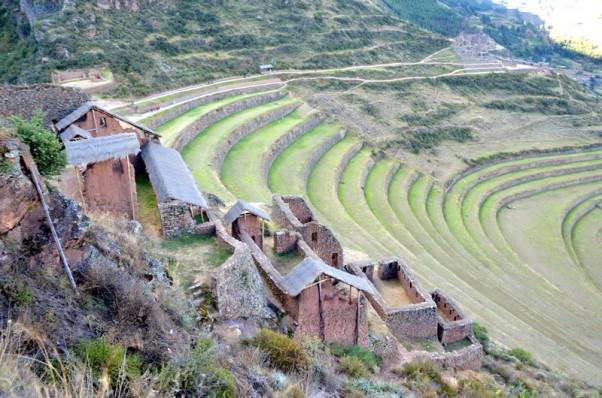 170625-Cusco-Perou (69) (Copier)