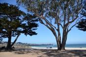 170707-Monterey-USA (1) (Copier)
