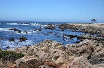 170707-Monterey-USA (22) (Copier)