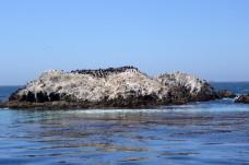170707-Monterey-USA (28) (Copier)
