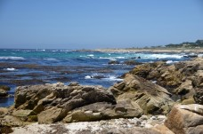 170707-Monterey-USA (35) (Copier)
