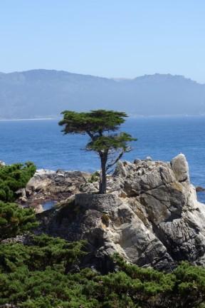 170707-Monterey-USA (43) (Copier)