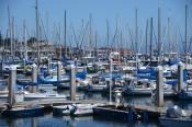 170707-Monterey-USA (5) (Copier)
