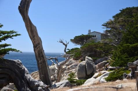 170707-Monterey-USA (53) (Copier)