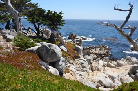 170707-Monterey-USA (56) (Copier)