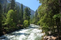 170711-Yosemite-USA (7) (Copier)