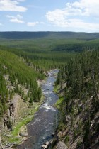 170724-Yellowstone-USA (109) (Copier)