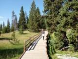 170724-Yellowstone-USA (46) (Copier)