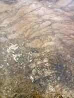 170725-Yellowstone-USA (31) (Copier)