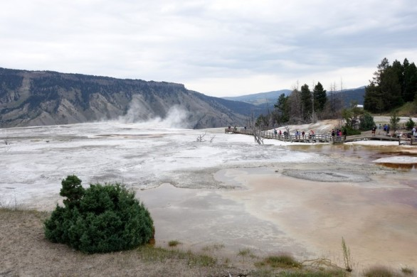 170725-Yellowstone-USA (54) (Copier)