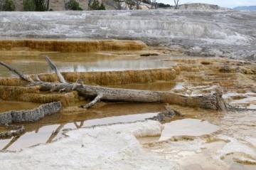 170725-Yellowstone-USA (60) (Copier)