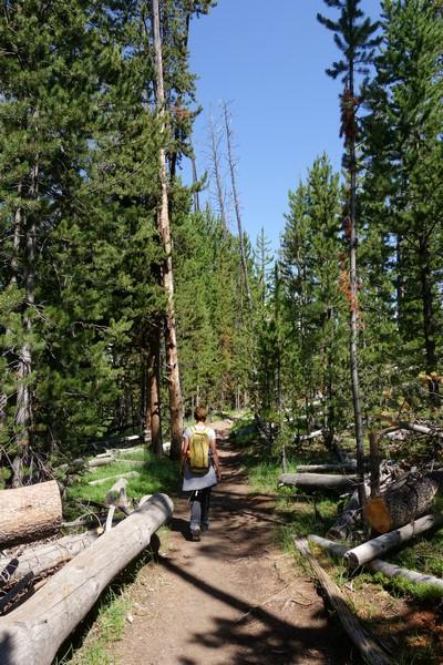 170726-Yellowstone-USA (23) (Copier)