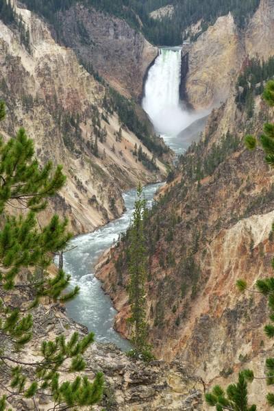 170726-Yellowstone-USA (71) (Copier)